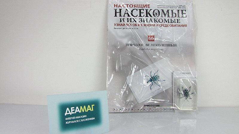 насекомые и их знакомые 32 выпуск